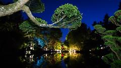 DSC05470 (regis.verger) Tags: temple zen nuit parc nocturne asiatique vgtal maulvrier