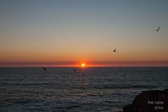 puesta de sol en Cabo Home (Pat Celta) Tags: nikon d70 galicia cabo home bueu puestasdesol summer aire libre paisaje mar cielo