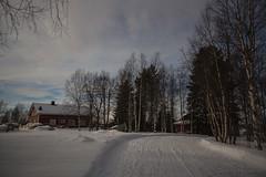 62-Moonlight_Cottages6 copy (Beverly Houwing) Tags: snow building night forest suomi finland frozen fullmoon lapland moonlight kukkola bungalow kukkolankoski