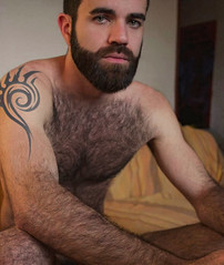 1182 (rrttrrtt555) Tags: hair hairy muscles beard tattoo bed bedroom eyes arms masculine chest lounge legs squat sofa blanket sheets stare shoulders