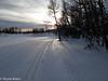 rk_2304 - 2009-12-12 at 12-40-21.jpg (kitlo59) Tags: vinter myrland råfiler