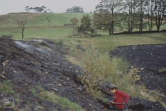 Coal getting. Mountain Ash burning tip, Pennar golf course, 23/10/84 (Mary Gillham Archive Project) Tags: historyarchaeology mountainash people so0300 wales 1984 23101984 2961