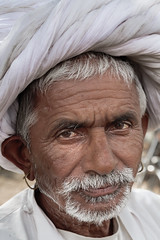 Zoltan Papdi 2015-3799 (Papdi Zoltan Silvester) Tags: inde rajasthan homme portrait vertical pushkar vieil blanc turban india man old white