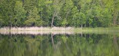 Old and Beautiful (shoooooooichi) Tags: lake reflection minnesota bemidji home