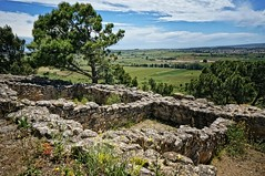 Remains of square stone structures on the Oppidum of d'Enserune in southern France 6th - 1st centuries BCE (mharrsch) Tags: oppidum hillfort fort archaeology archaeologicalsite celt roman oppidumdenserune france languedoc mharrsch