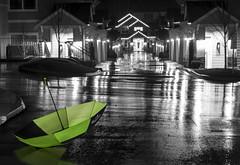 Green Umbrella (salsadan101) Tags: longexposure light bw color green rain umbrella sunday january 4th gigharbor selectivecolor