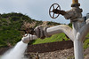 Geothermal spring (Thomas Roland) Tags: travel summer plant hot water america spring power sommer central el tourist steam geyser amerika geothermal hidalgo tequisquiapan geiser rejse gejser mellemamerika geotermisk
