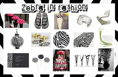 Fashionable with Zebra Pattern (TrendVogue) Tags: life wedding food celebrity net love girl beauty fashion sex cat walk models parties style wear vogue health ready week to trend mode designers trendvogue