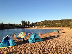 Narrabeen Beach