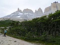 Torres del Paine-186