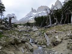 Torres del Paine-208