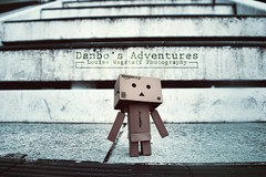 It's A Big World D-Bo (loulovesdanbo) Tags: cute toy emotion character exploring explore expressive emotive danbo toyphotography revoltech danbos danboard danboru danbomini danbophotography