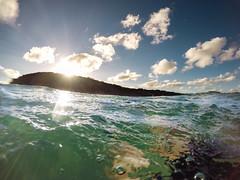 Sunset Swim (Kyle Taylr) Tags: ocean sunset sky water swim waves underwater live ngc wave australia adventure breathe sim unbound freedive gopro
