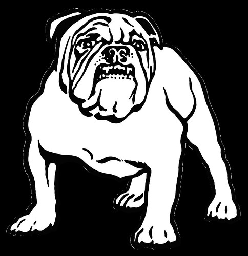 Canterbury Bankstown Bulldogs 1978 Heritage Bulldog Emblem Enhanced