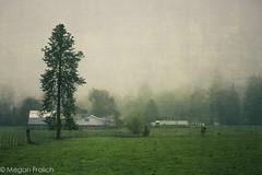 58/365 childhood (Megan Fralich) Tags: field fog barn farm americanflag pasture