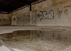 Hidden Art (Bo Drinkard) Tags: urban georgia graffiti exploration macon urbex maconga top500 urbanexplore a6000 sonya6000