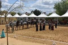Osuna, Spain (LidyvN) Tags: show horses horse girl spain fiesta dress dancing horsemen andalusia rider bullfight ropa fria horseman