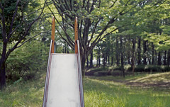 Slide in the grove (odeleapple) Tags: pentax sp smc supertakumar 55mm fujicolor100 film slide grove