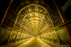 golden way (christelerousset) Tags: ladfense night paris lepacific passage passerelle vertige dor nightshot gold golden france tunnel