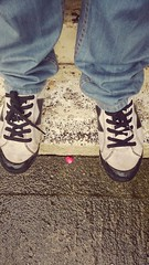 Feet at Night: No.26 (WatermelonHenry) Tags: pink white flower feet pumps skateboarding trainers petal footwear skate paving skater macbeth laces skateshoes feetatnight macbethtrainers