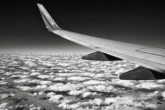 Flying Over Puffy Clouds (Black & White) (thor_mark ) Tags: travel blackwhite unitedstates co miscellaneous day9 planewindow airplanewindow southwestairlines planewing airplanewing project365 colorefexpro airplanewindowview flyingaboveclouds flyingabovetheclouds blueskieswithclouds flighttoaustin silverefexpro2 nikond800e capturenx2edited flightdiatoaus