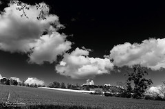 Clouds and crops (Toucaly) Tags: white black france nature field landscape countryside blackwhite spring europe noir cereal sunny rape crops paysage campaign campagne cultures mont blanc printemps champ picardie noirblanc csar colza oise ensoleill crale 500px froidmont montcsar ifttt