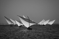 Vela llatina (David Segarra) Tags: blanc negre albufera vela llatina valencia