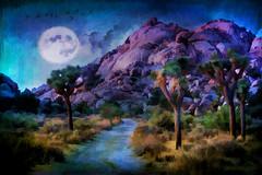 Evening Hike (East of 29) Tags: eveninghike joshuatreenationalpark joshuatree moon texture sliderssunday