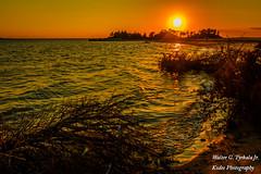 Nightfall at Sandy Hook (walter2046) Tags: gatewaynp gatewaynationalpark nj newjersey dusk island land naturallighting nightfall ocean summer sun sunset trees vacation water waves