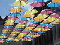 Tournai et parapluies (Marc Fievet) Tags: parapluies tournai rue rues extrieur couleurs dcorations tourisme belgique olympusomd5mkii olympus photographebelge contrastes art arts