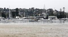 Low tide, Clontarf Beach, Sydney Harbour (geemuses) Tags: clontarf clontarfbeach sydneyharbour nsw northernbeaches lowtide water harbour boats