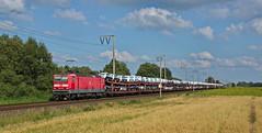 """Ins """"DB Museum"""" sollte diese Fahrt, laut Zugzielanzeige, gehen. (012 066-7) Tags: eisenbahn railways lokomotive elok br143 143871 db dbc cargo schenker audi feld himmel wolken blau grn orange mais hafer outdoor fahrzeug zug train"""