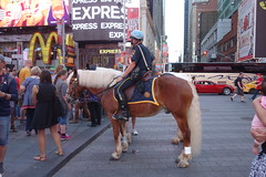 NYPD Horses in Times Square (YouTuber) Tags: nypdhorses timessquare newyorkcity nyc manhattan