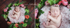 Emily Aged 2 Weeks! (Samantha Nicol Art Photography) Tags: baby newborn girl props samantha nicol art natural light photographer beith north ayrshire scotland flowers wreath asleep
