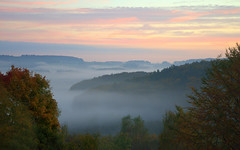pink morning with fog (be there...) Tags: pink morning fog mist hills trees autumn sky nature rosa morgen morgenrte jutrzenka poranek landscape landschaft panorama falkenstein bavaria bayern germany nikon d90 andromeda