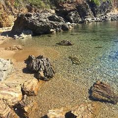 """Buongiorno dalla spiaggia di #felciaio a #capoliveri nello scatto di @lamiky1980. Continuate a taggare le vostre foto con #isoladelbaapp il tag delle vostre vacanze all""""#isoladelba. Visita http://ift.tt/1NHxzN3  (isoladelbaapp) Tags: isoladelba elba visitelba portoferraio porto azzurro capoliveri marciana marina di campo rio"""