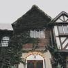 SPRING LAKE (SAS PHOTOS) Tags: springlake sasphotos sasphotoimaging sarahsmithphotography library newjersey ivy