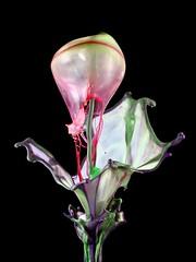 075 / 2016 (andy_1605) Tags: art drop droplet drops liquid macro liquidsculpture sculpture splash tropfen tropfenfotografie wasser wassertropfen water waterdrop waterdroplets waterdrops watersculpture watersplash highspeedphotography
