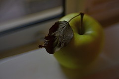 Ripe (MPnormaleye) Tags: fruit macintosh grannysmith apple food leaf blur ledge bokeh dof lensbaby sweet35 utata