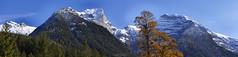Autumnal panorama at the Eng (Bernhard_Thum) Tags: bernhardthum thum h5d60 hasselblad hc32150ii karwendel alps stitching autumn schaufelspitze sonnjoch