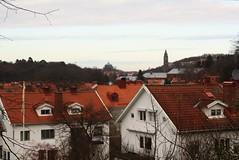 nggrden (blondinrikard) Tags: november gteborg gothenburg 2014