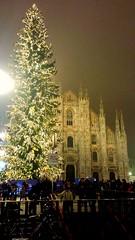 Buon Natale. (majojosphotography) Tags: christmas winter milan tree lights gifts nightlight brightlights merrychristmas touristspot buonnatale doumo milanitaly christmasseason mobilephotography giveloveonchristmasday treesofgiving