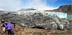 On montera sur le glacier un peu plus loin que cette griffe qui laboure la roche, ... (Barbara DALMAZZO-TEMPEL) Tags: santacruz argentine lagoviedma glacierviedma patagoniedusud
