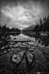 Early Morning Storm on String Lake in Black and White (Matt Anderson Photography) Tags: morning blackandwhite bw white lake black color reflection vertical horizontal contrast forest landscape fishing outdoor hiking shoreline scenic nobody panoramic calm adventure evergreen string destination wyoming grandtetons deciduous conifer mattanderson gettingawayfromitall roomforcopy otherkeywords mattandersonphotography connivers zzzpics