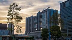(KaeriRin) Tags: street sunset sky urban sun car set modern clouds pen island japanese prime tokyo olympus subaru odaiba modernarchitecture subaruwrxsti 25mm subaruwrx artificialisland primelens japanesemall japanesearchitecture urbanjapan urbantokyo primelense 25mm18 epl5