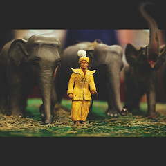 300 sixty one | 365 III (Randomographer) Tags: wood elephant photoshop 50mm miniature wooden carved model circus 365 performer processed 361 ringmaster ringleader project365
