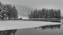 20150122069865 (koppomcolors) Tags: winter snow vinter sweden sverige scandinavia snö värmland varmland koppom skillingmark koppomcolors