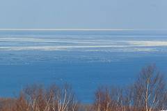 Sea of drift ice /  (yanoks48) Tags: winter sea japan hokkaido     abashiri   driftice  seaofokhotsk
