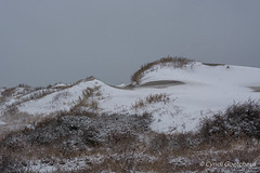 coquina 7021 (cjnewlife12) Tags: snow beach landscape dunes outerbanks coquinabeach snowdunes snowobx