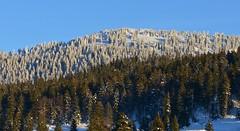 Fort des Rousses (Michel Seguret (Thanks for + 5.300.000 views)) Tags: winter mountain france berg montagne nikon montana hiver jura invierno inverno d800 michelseguret